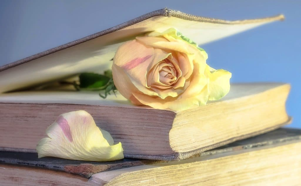 pixabay book rose-2101475_1920
