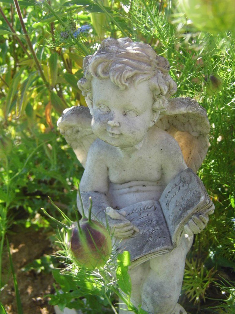 INSCHRIJVING angel-2432839_1280