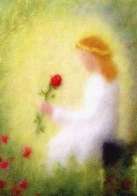 angel roses