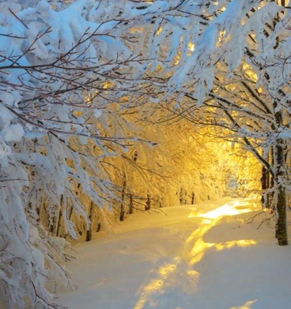 Add a descriphttp://favoritephotoz.blogspot.com/2013/12/sunrise-in-snowy-woods-by-roberto.htmltion…